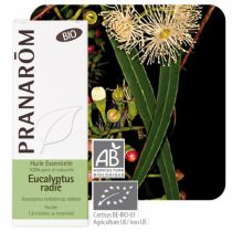 Eucalyptus Radiata Essential Oil Organic Pranarom 10Ml