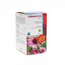 Echinacea Forte 1215 - 100 + 20 Capsules Gratis Fytostar
