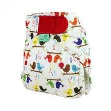Washable Nappy Easyfit V4 All-In-One Tweet Tots Bots