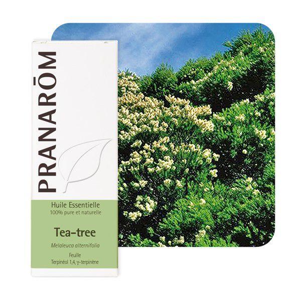 Tea Tree Organic Essential Oil Pranarom 10Ml