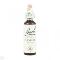 Bach Flower Remedie N°09 Clematis 20Ml