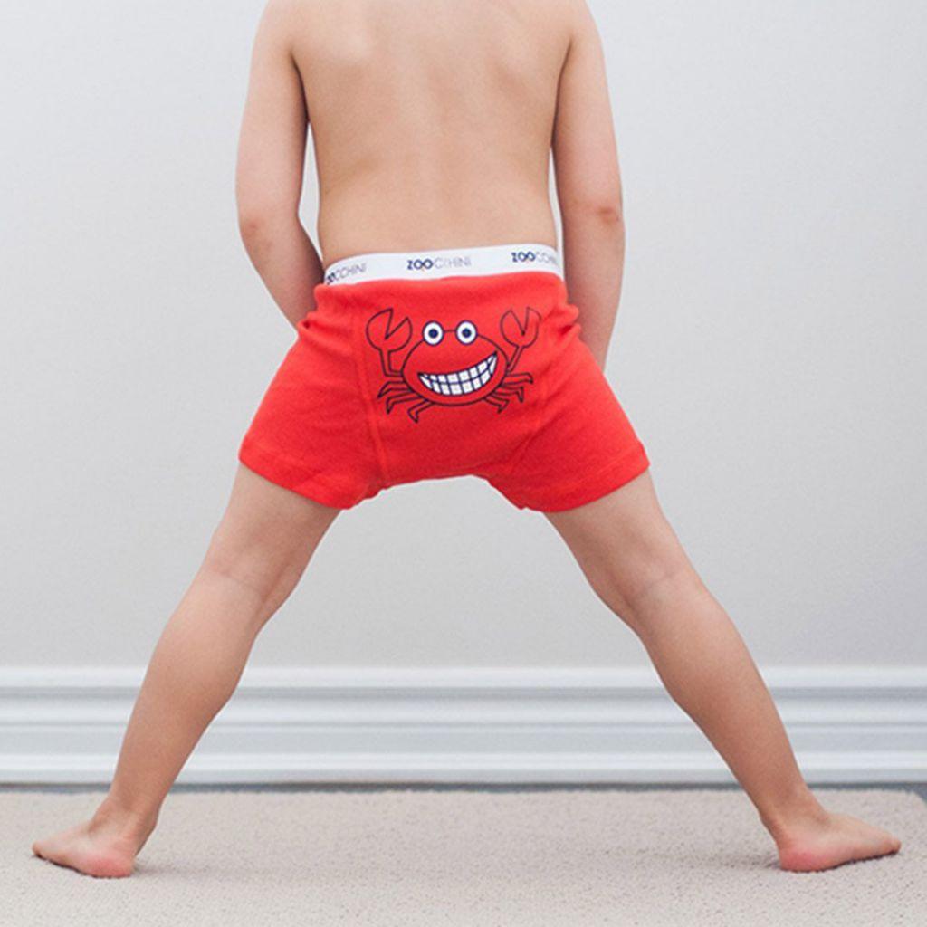 Boxers Boys 3 pieces 2-3Y Zoocchini
