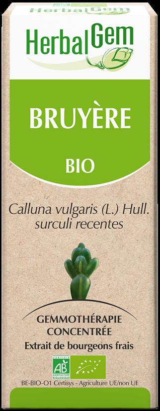 Bruyère - Macérat Concentré De Bourgeons Bio 15Ml