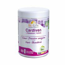 Cardiven - Carnimag Q10 - 60 Gelules
