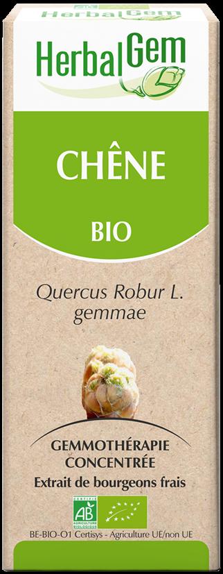 Chêne - Macérat Concentré De Bourgeons Bio 50Ml