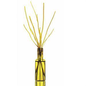 Diffuseur À Branches 15 Ml Parfum Naturel BSAB