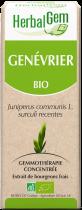 Herbalgem Jeneverbes Geconcentreerd Maceraat Knoppen Bio 50Ml
