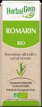 Herbalgem Rozemarijn Geconcentreerd Maceraat Knoppen Bio 50Ml