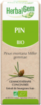 Pin - Macérat Concentré De Bourgeons Bio 50Ml