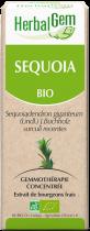 Sequoia Herbalgem Macerat Concentre De Bourgeons Bio 50Ml