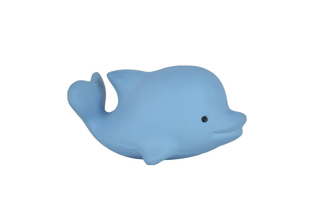Whale First Ocean Animals Tikiri